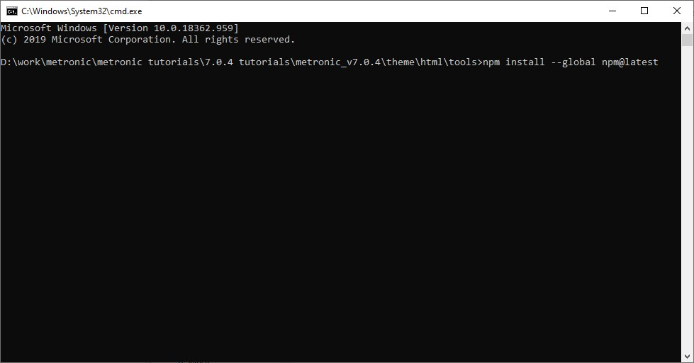 install npm